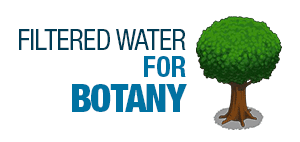 Filtered Water for Botany